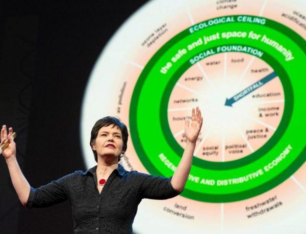 Kate Raworth'un Simit Ekonomisi Üzerine Düşünceler / Mahfi Eğilmez